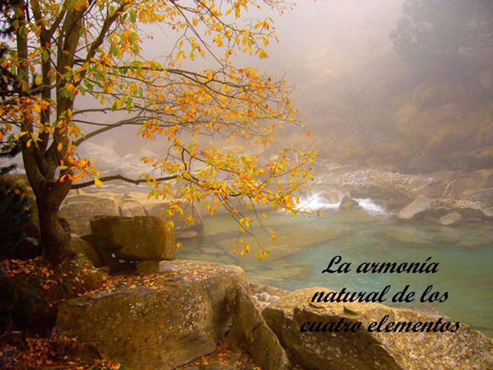 La armonía natural de los cuatro elementos