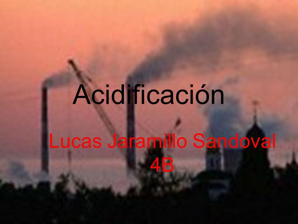 La acidificación es la contaminación del agua y aire, dañando el equilibrio ambiental