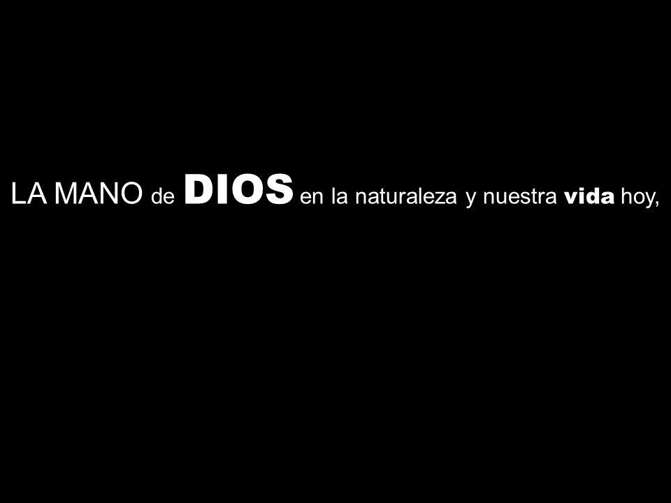 LA MANO de DIOS en la naturaleza y nuestra vida hoy,