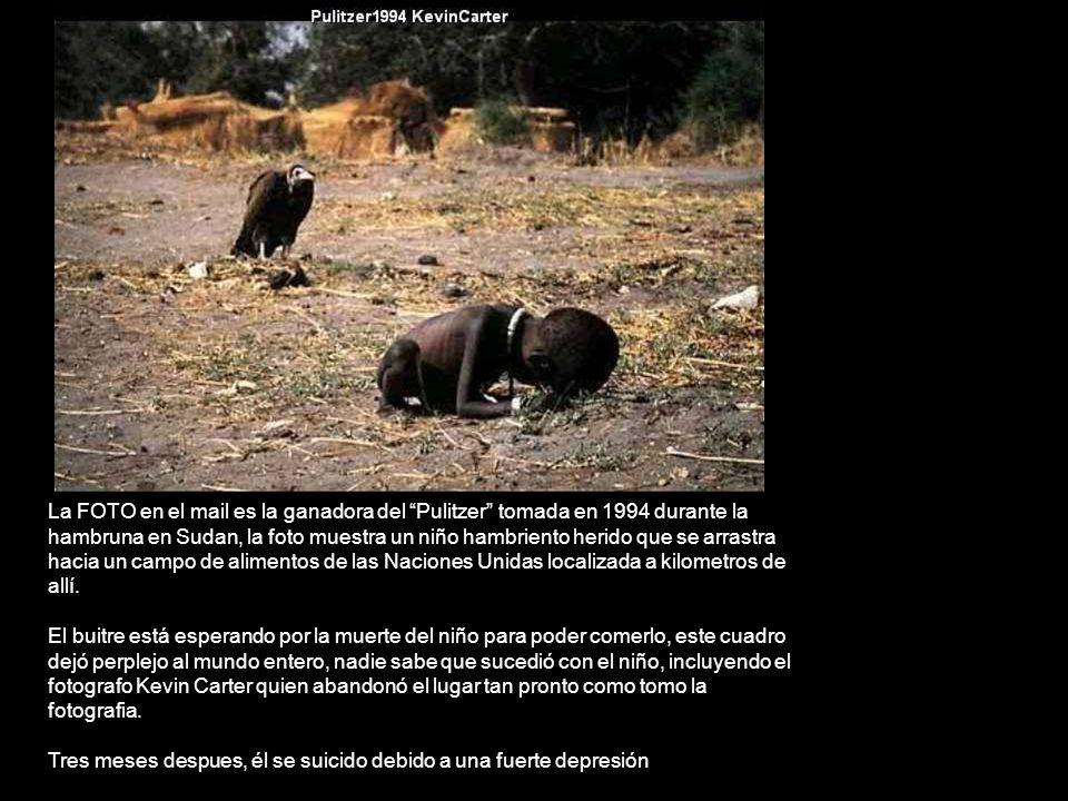La FOTO en el mail es la ganadora del Pulitzer tomada en 1994 durante la hambruna en Sudan, la foto muestra un niño hambriento herido que se arrastra