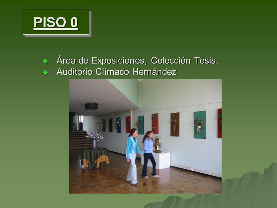 Área de Exposiciones, Colección Tesis.Área de Exposiciones, Colección Tesis.