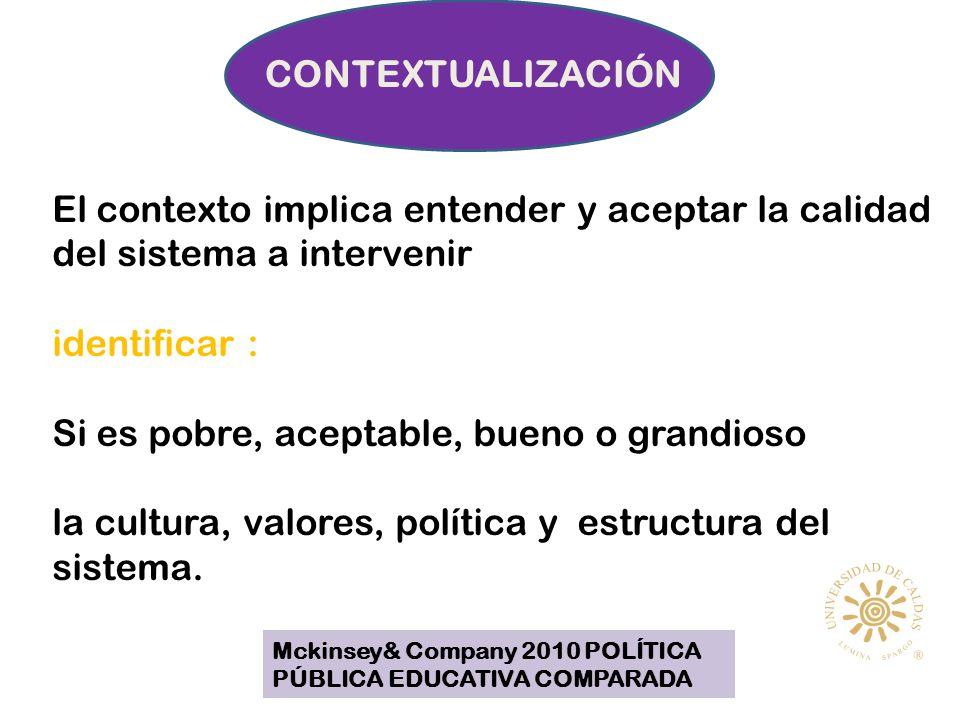 CONTEXTUALIZACIÓN El contexto implica entender y aceptar la calidad del sistema a intervenir identificar : Si es pobre, aceptable, bueno o grandioso la cultura, valores, política y estructura del sistema.