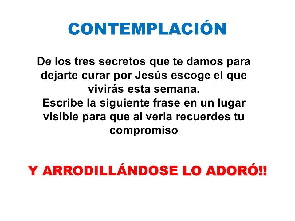 CONTEMPLACIÓN Y ARRODILLÁNDOSE L LL LO ADORÓ!.