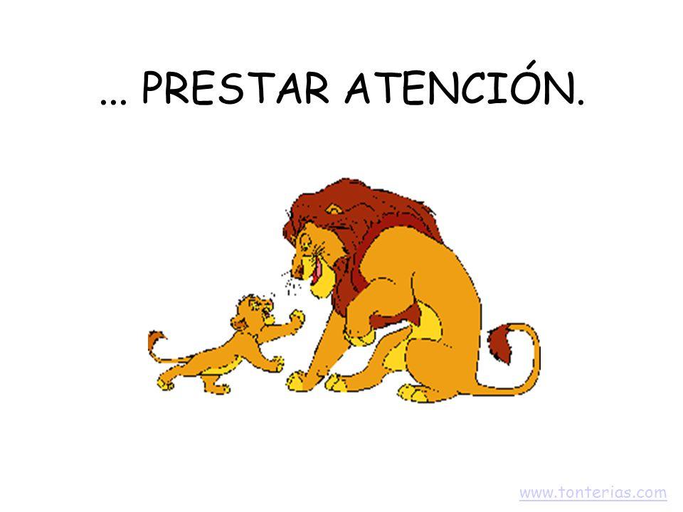 ... PRESTAR ATENCIÓN. www.tonterias.com