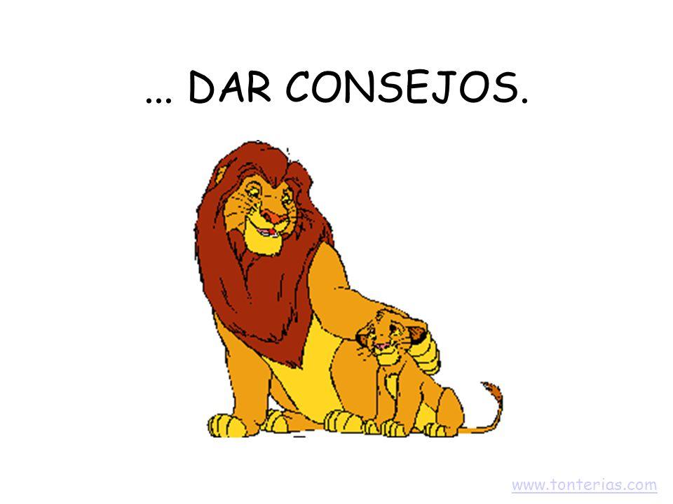 ... DAR CONSEJOS. www.tonterias.com