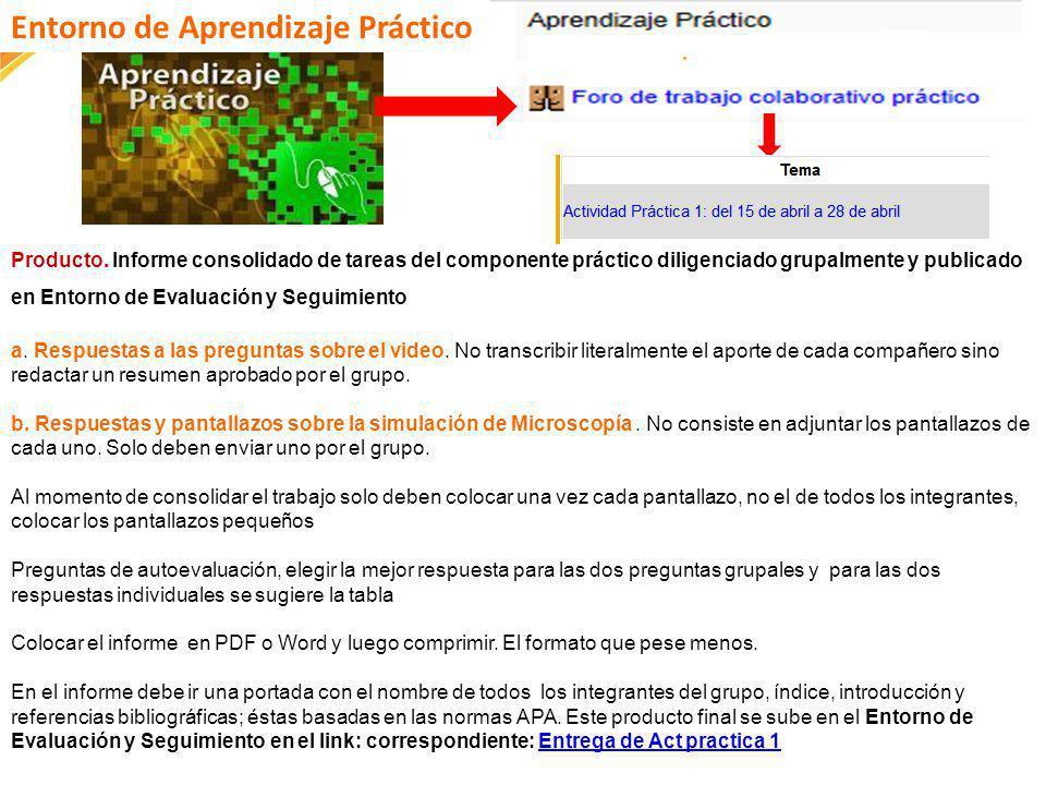 FI-GQ-GCMU-004-015 V. 001-17-04-2013 Producto. Informe consolidado de tareas del componente práctico diligenciado grupalmente y publicado en Entorno d