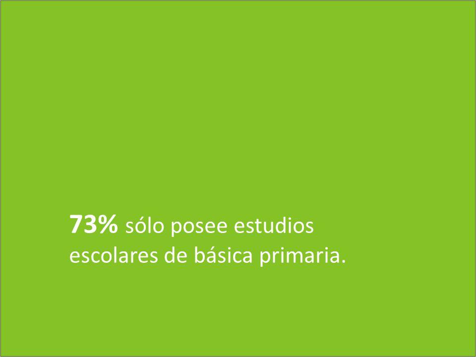 73% sólo posee estudios escolares de básica primaria.