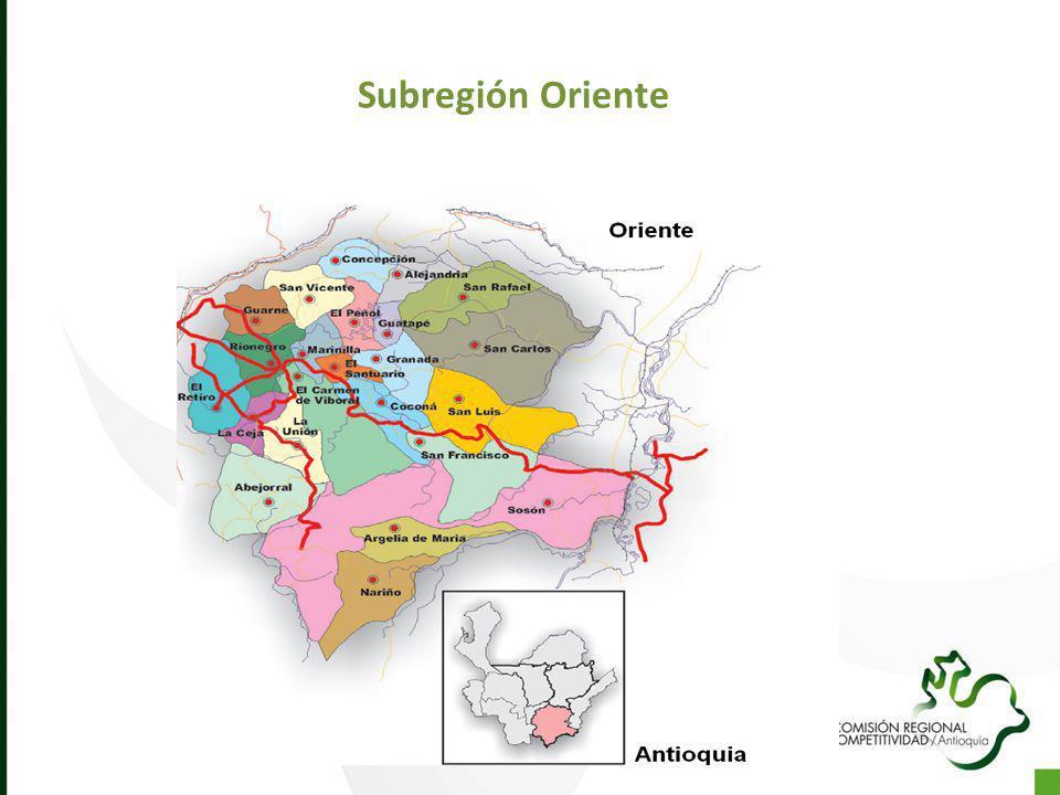 Subregión Oriente