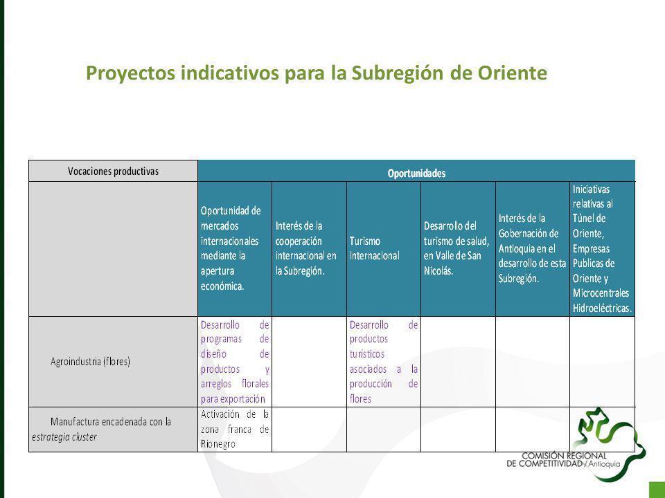 Proyectos indicativos para la Subregión de Oriente
