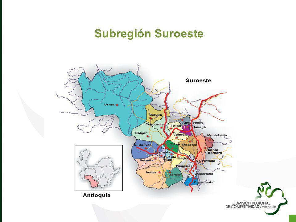 Subregión Suroeste