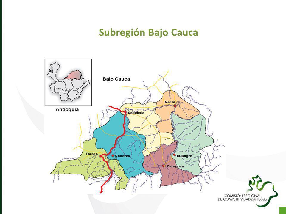 Subregión Bajo Cauca