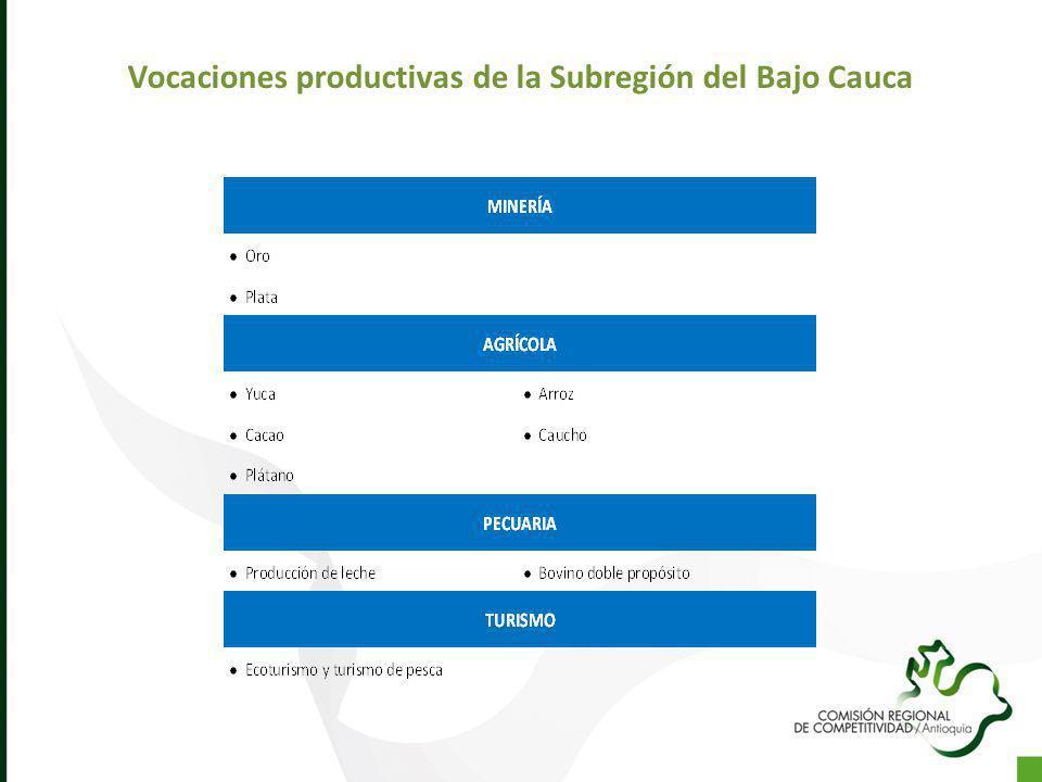Vocaciones productivas de la Subregión del Bajo Cauca