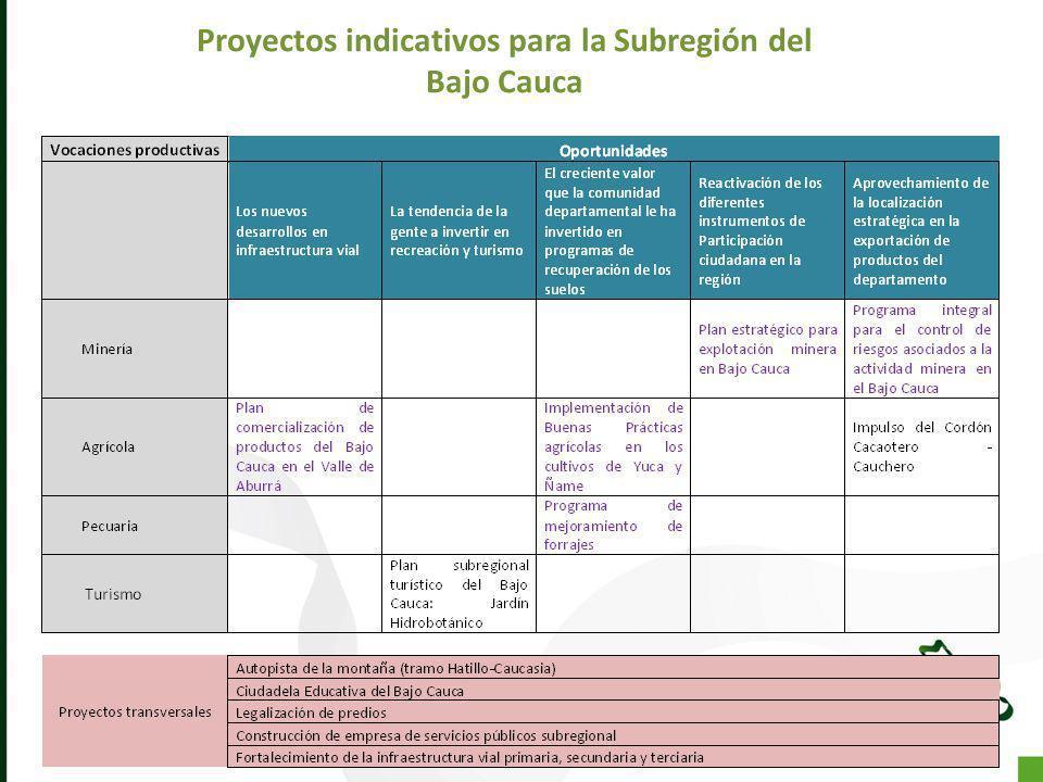 Proyectos indicativos para la Subregión del Bajo Cauca