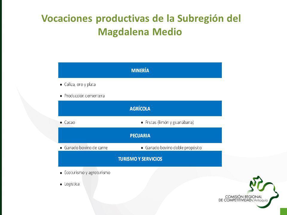 Vocaciones productivas de la Subregión del Magdalena Medio