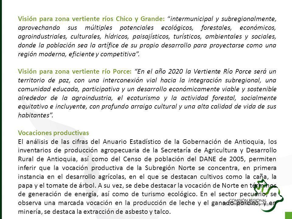 Visión para zona vertiente ríos Chico y Grande: intermunicipal y subregionalmente, aprovechando sus múltiples potenciales ecológicos, forestales, econ