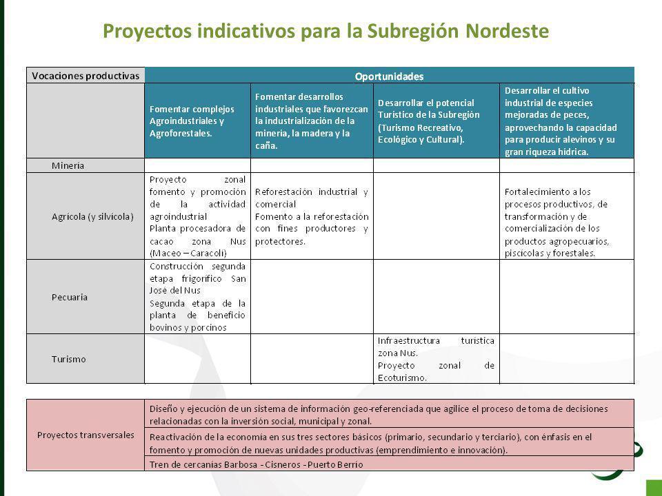 Proyectos indicativos para la Subregión Nordeste