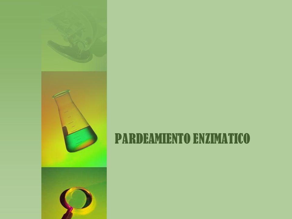 Objetivos Identificación y control del pardeamiento enzimático.