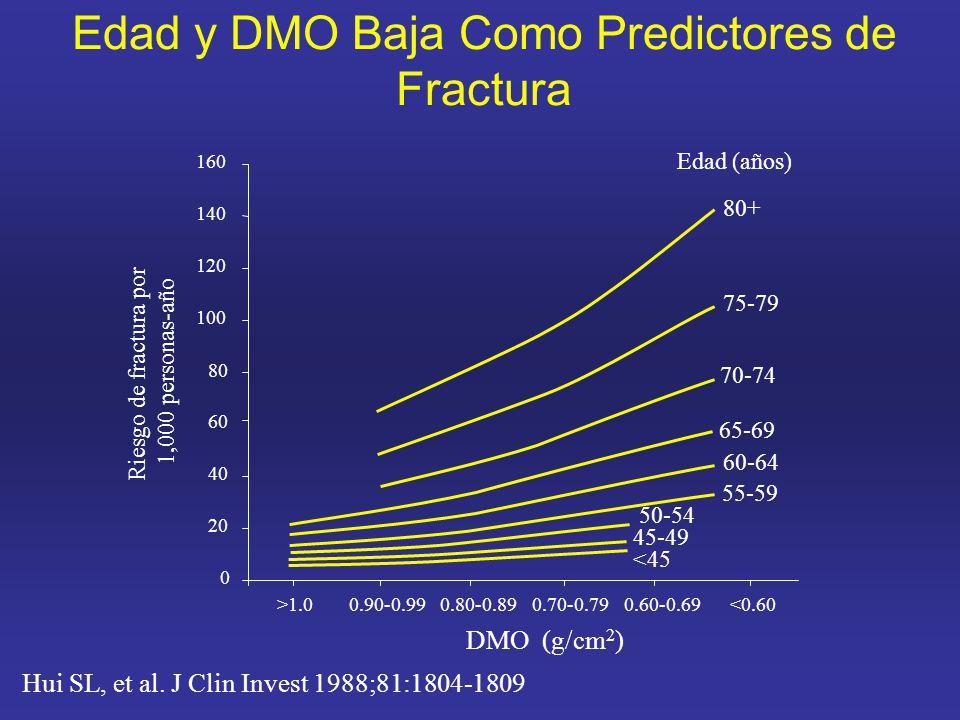 Edad y DMO Baja Como Predictores de Fractura Hui SL, et al.