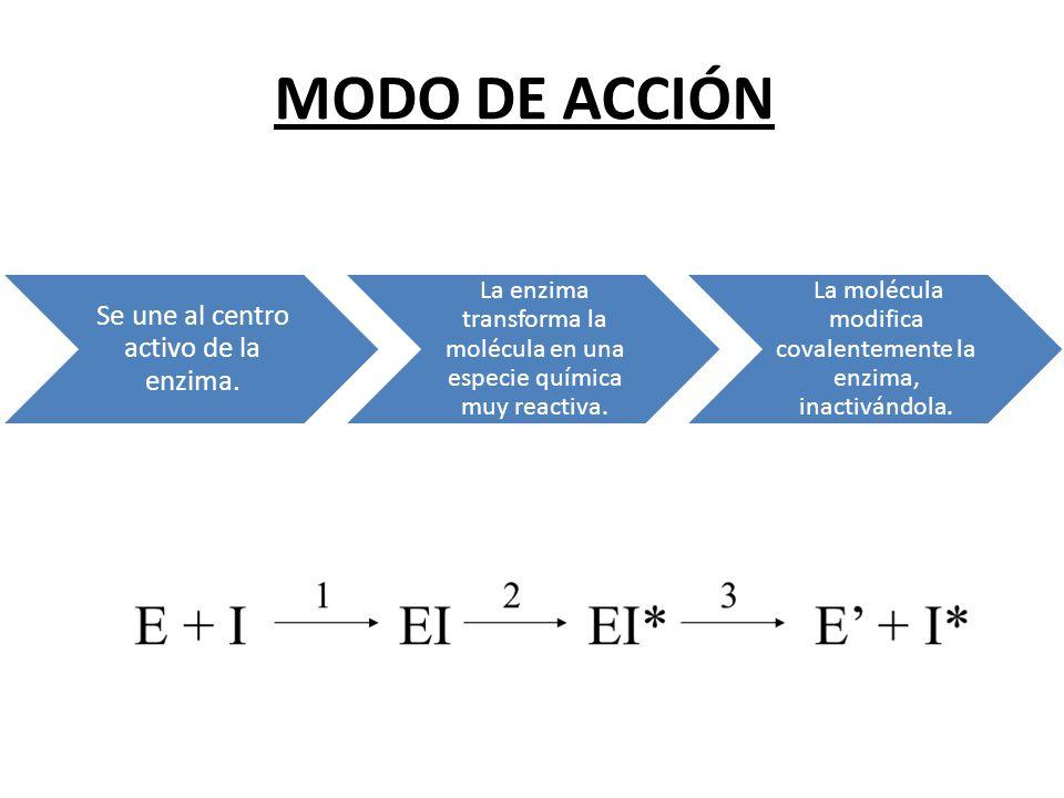 MODO DE ACCIÓN Se une al centro activo de la enzima. La enzima transforma la molécula en una especie química muy reactiva. La molécula modifica covale