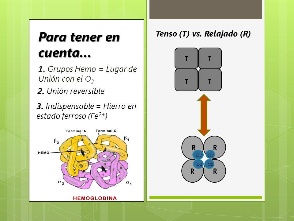 1. Grupos Hemo = Lugar de Unión con el O 2 2. Unión reversible 3. Indispensable = Hierro en estado ferroso (Fe 2+ ) Tenso (T) vs. Relajado (R) Para te