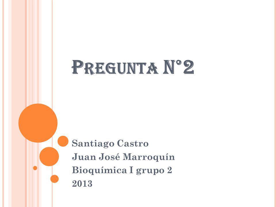 P REGUNTA N°2 Santiago Castro Juan José Marroquín Bioquímica I grupo 2 2013