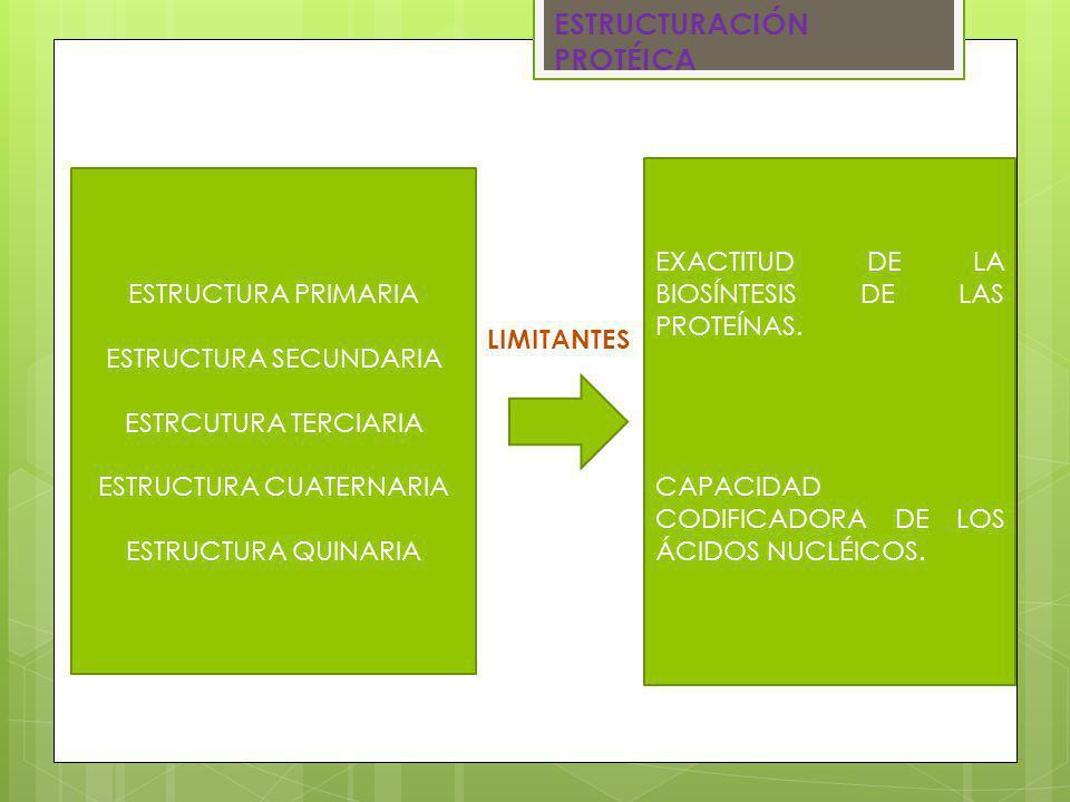 http://es.scribd.com /doc/65452696/6- Proteinas http://biomodel.ua h.es/model2/lip/ap o-b.htm http://www.bionov a.org.es/biocast/te ma08.htm#Screen 00 Karp, Gerald.