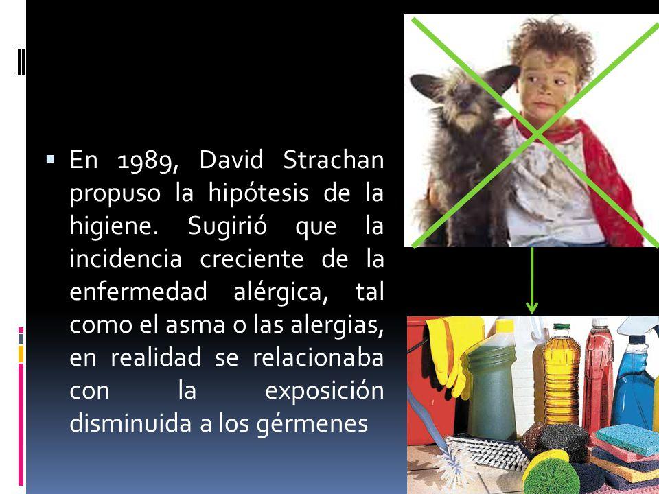 En 1989, David Strachan propuso la hipótesis de la higiene. Sugirió que la incidencia creciente de la enfermedad alérgica, tal como el asma o las aler
