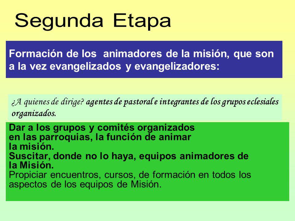 Formación de los animadores de la misión, que son a la vez evangelizados y evangelizadores: Dar a los grupos y comités organizados en las parroquias, la función de animar la misión.