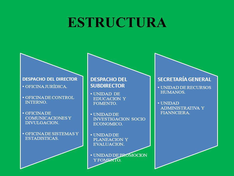 ESTRUCTURA DESPACHO DEL DIRECTOR OFICINA JURÍDICA. OFICINA DE CONTROL INTERNO. OFICINA DE COMUNICACIONES Y DIVULGACION. OFICINA DE SISTEMAS Y ESTADIST
