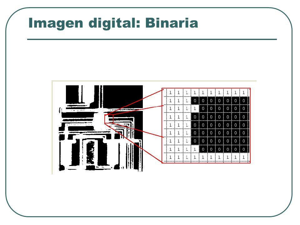 Imagen digital Imagen = imagen digital Imagen = función de la intensidad de la luz f ( x, y ) Resolución: Número de filas y columnas nxm Definición (profundidad): Número de bits usados para codificar la intensidad de un píxel.