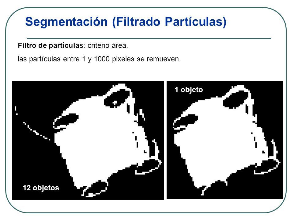 Segmentación (Umbralización) La imagen se transforma de escala de grises a binaria.