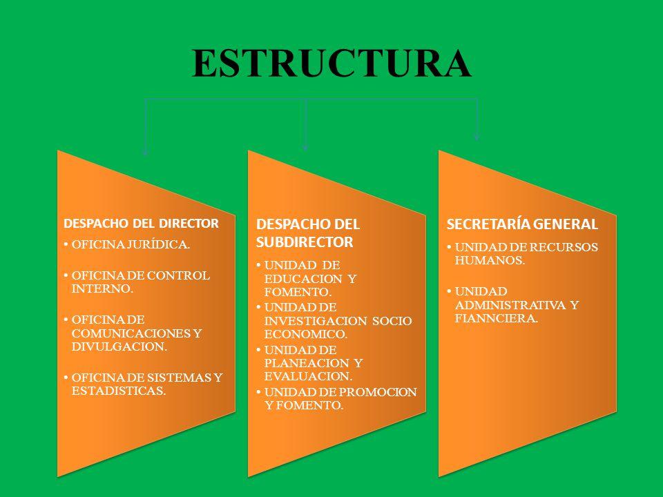 ESTRUCTURA DESPACHO DEL DIRECTOR OFICINA JURÍDICA.