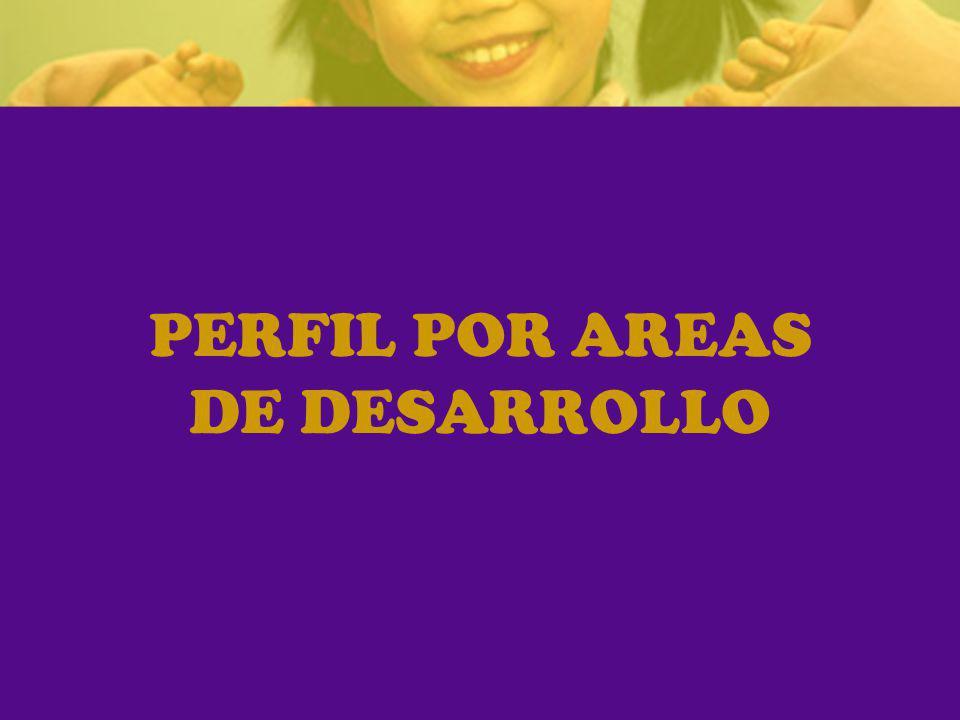 PERFIL POR AREAS DE DESARROLLO
