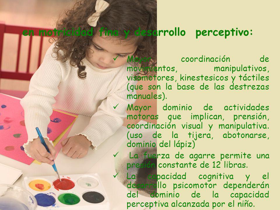 en motricidad fina y desarrollo perceptivo: Mayor coordinación de movimientos, manipulativos, visomotores, kinestesicos y táctiles (que son la base de las destrezas manuales).