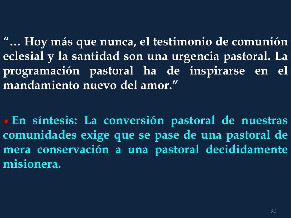 19 Tanto en la gestación de estos planes como en su realización deben participar con voz y voto todas las expresiones de vida apostólica y espiritual
