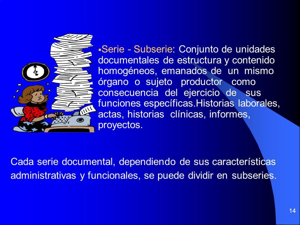 13 Documento de Apoyo: Es aquel de carácter general (leyes, decretos, resoluciones, manuales, instructivos, etc) que por la información que contiene, incide en el cumplimiento de funciones específicas de la gestión administrativa.