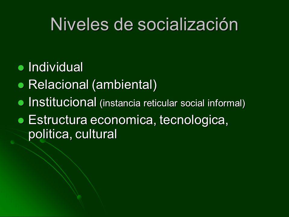 Niveles de socialización Individual Individual Relacional (ambiental) Relacional (ambiental) Institucional (instancia reticular social informal) Insti