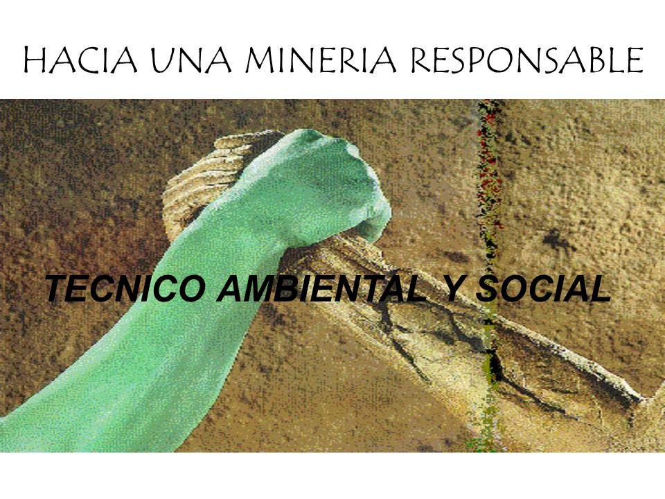 TECNICO AMBIENTAL Y SOCIAL HACIA UNA MINERIA RESPONSABLE