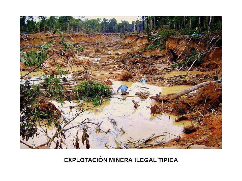 EXPLOTACIÓN MINERA ILEGAL TIPICA