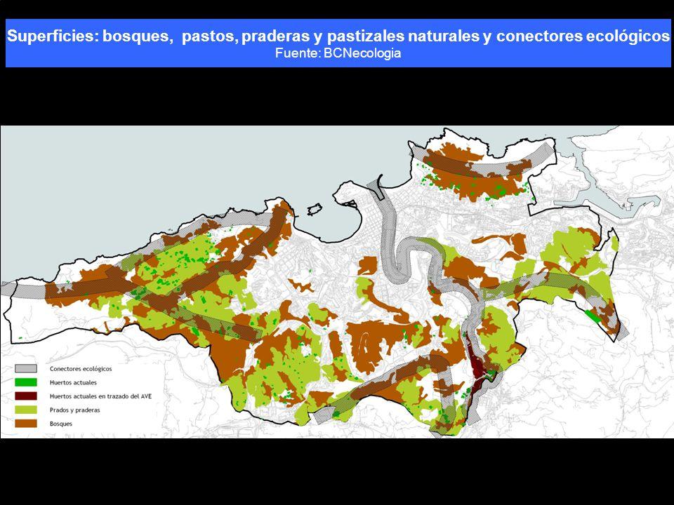 Superficies: bosques, pastos, praderas y pastizales naturales y conectores ecológicos Fuente: BCNecologia