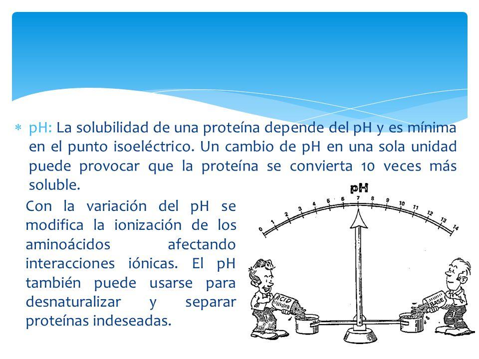 Estructura Secundaria de las proteínas HÉLICE ALFA