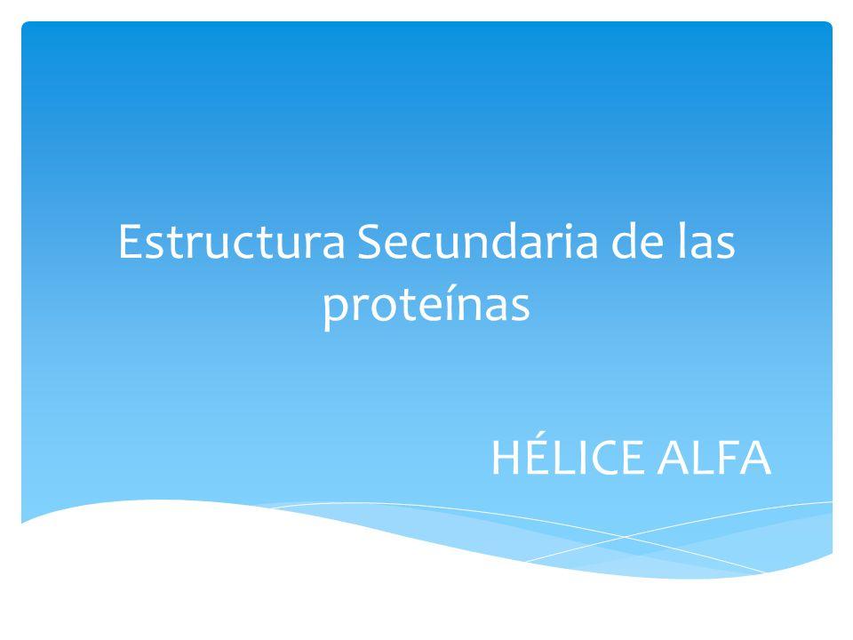 La alfa hélice se forma más frecuentemente debido a que presenta mayor estabilidad.
