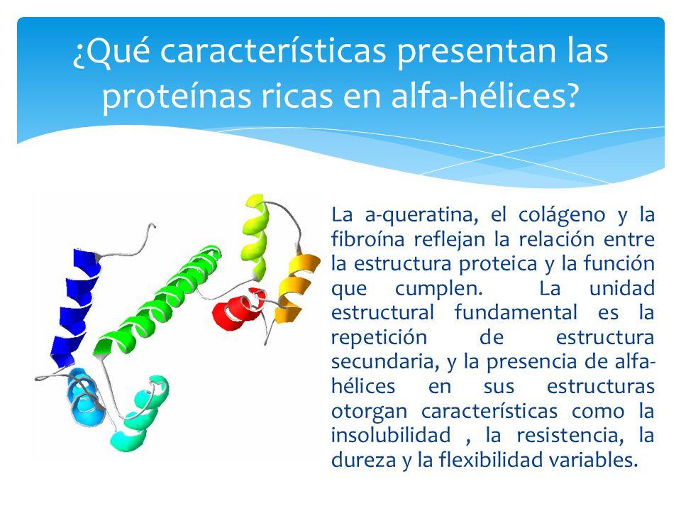 Nelson D, Cox M.Lehninger Principios de Bioquímica.