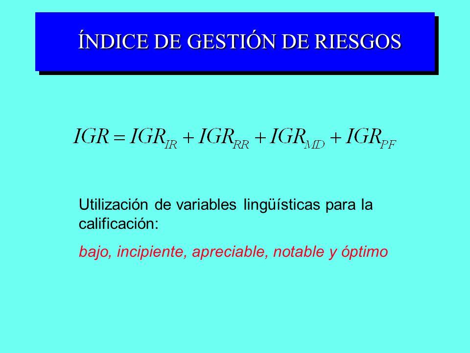 ÍNDICE DE GESTIÓN DE RIESGOS Utilización de variables lingüísticas para la calificación: bajo, incipiente, apreciable, notable y óptimo