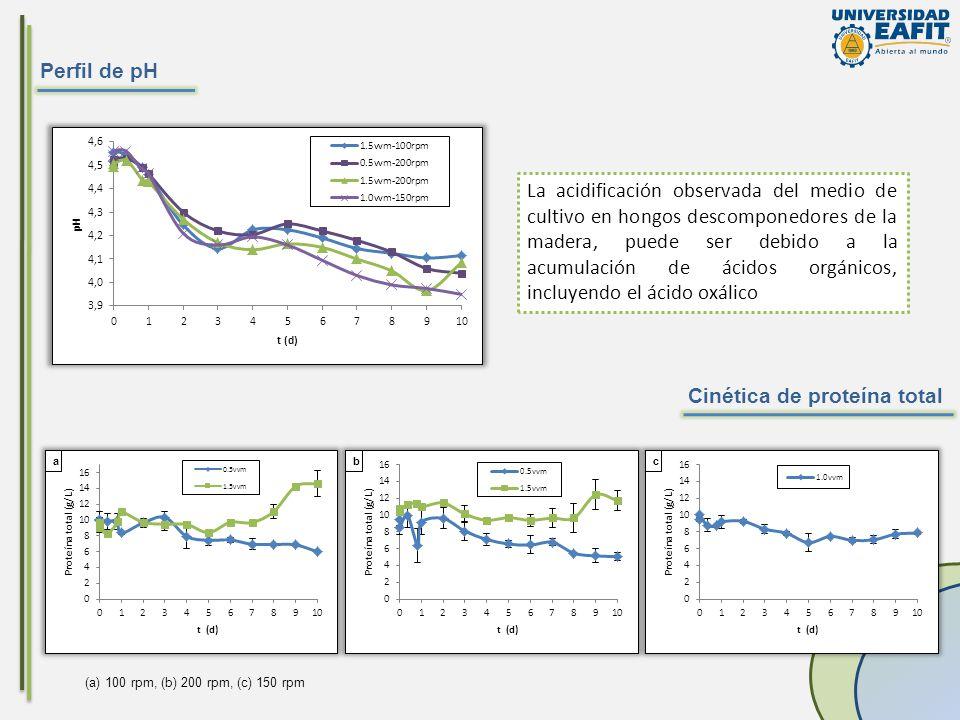 Perfil de pH Cinética de proteína total La acidificación observada del medio de cultivo en hongos descomponedores de la madera, puede ser debido a la