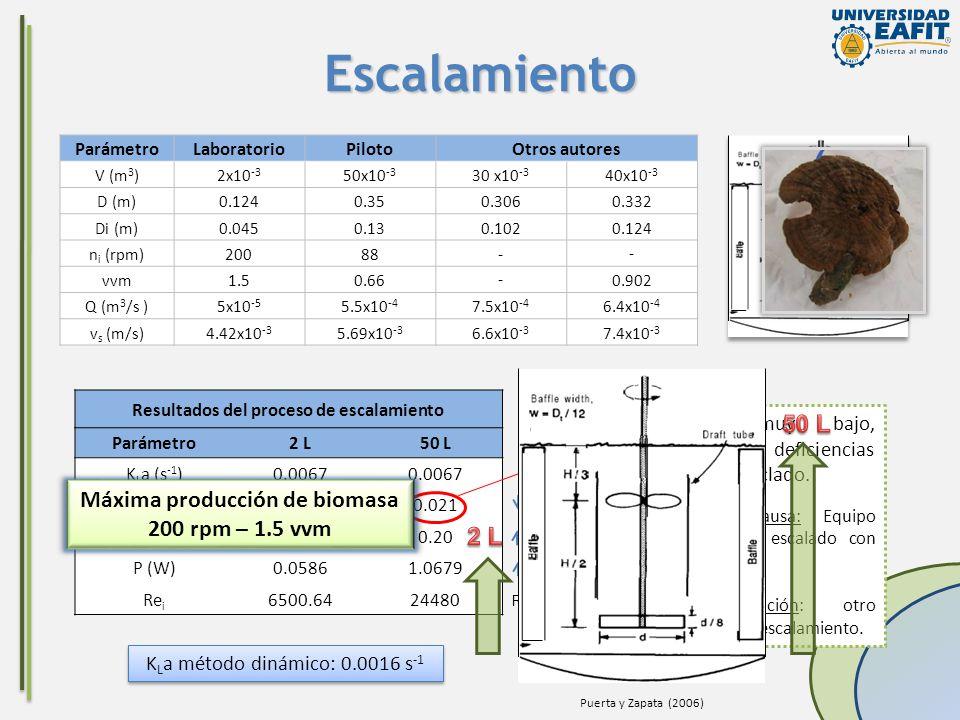 18 veces 1.3 veces 1.37 veces Escalamiento ParámetroLaboratorioPilotoOtros autores V (m 3 )2x10 -3 50x10 -3 30 x10 -3 40x10 -3 D (m)0.1240.350.3060.33