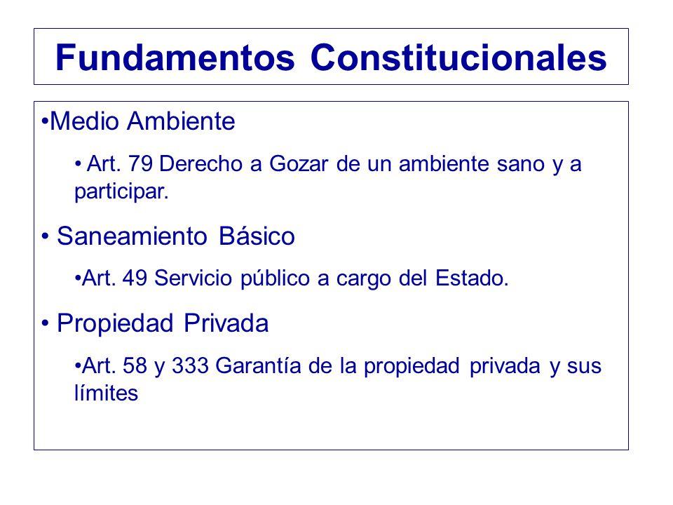 Medio Ambiente Art. 79 Derecho a Gozar de un ambiente sano y a participar. Saneamiento Básico Art. 49 Servicio público a cargo del Estado. Propiedad P
