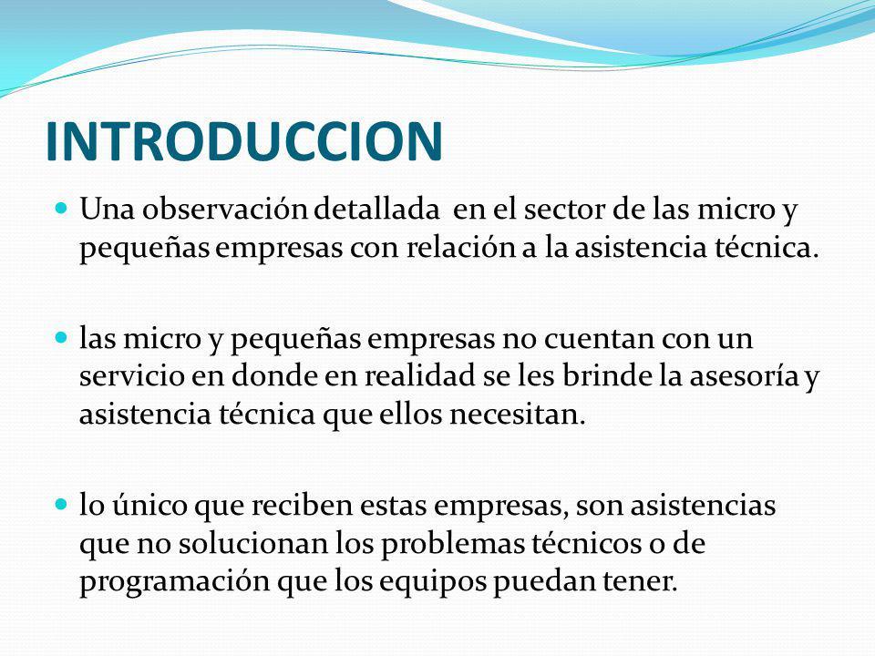 INTRODUCCION Una observación detallada en el sector de las micro y pequeñas empresas con relación a la asistencia técnica.