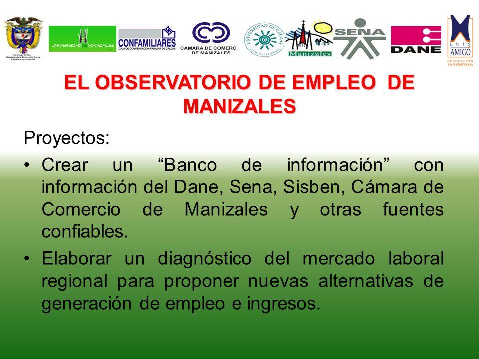EL OBSERVATORIO DE EMPLEO DE MANIZALES Proyectos: Crear un Banco de información con información del Dane, Sena, Sisben, Cámara de Comercio de Manizale