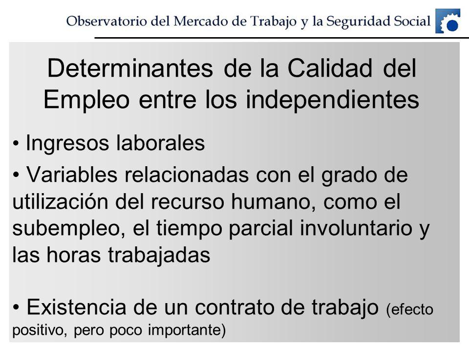 Determinantes de la Calidad del Empleo entre los independientes Ingresos laborales Variables relacionadas con el grado de utilización del recurso huma